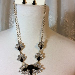 Bold and Beautiful Necklace and Earrings